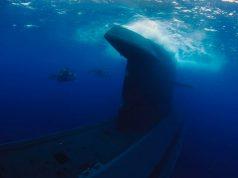 HNLMS Dolfijn