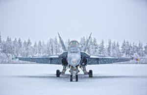 Finnish Air Force Hornet