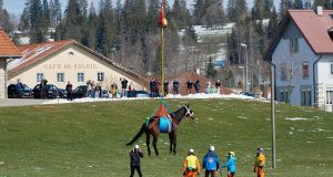 Swiss Army horse hoisting with helicopters