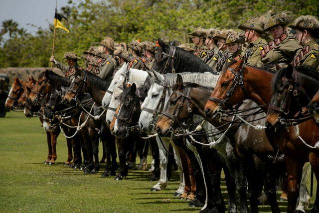 10th Light Horse Regiment re-establishment